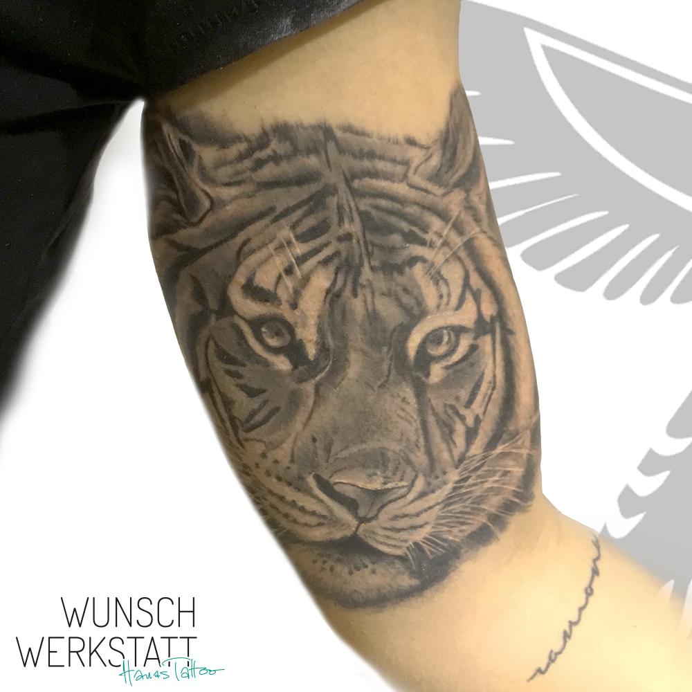 Tiger Tattoo Innenarm Wunschwerkstatt Hana