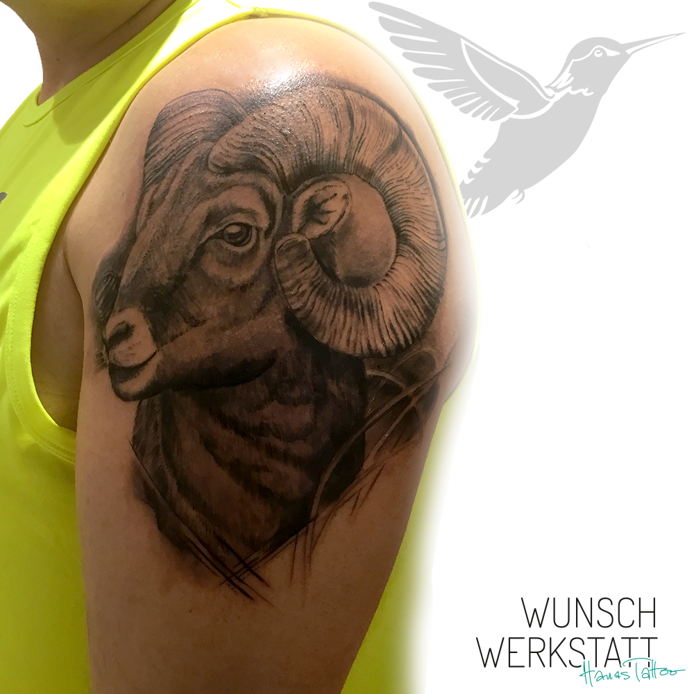 Hanas Tattoo in Würzburg Widder auf dem Oberarm
