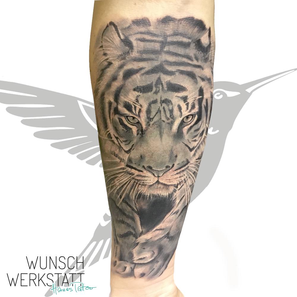 Tigertattoo Unterarm Wunschwerkstatt