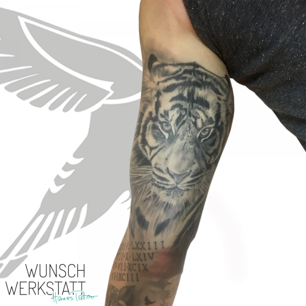 Wunschwerkstatt Tattoo Hana Oberarm Tiger