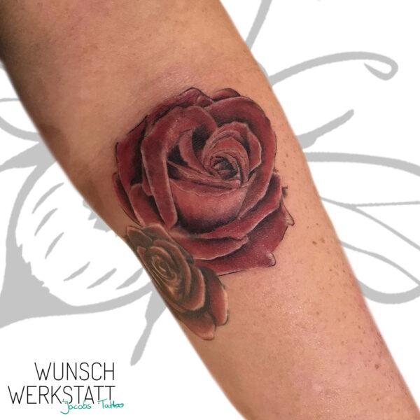 Tattoo Jacob v. Wunschwerkstatt - Rose Unterarm